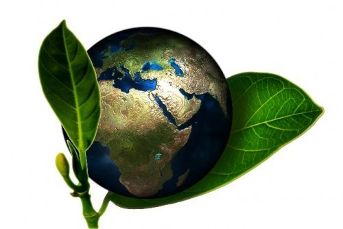Workshop Internazionale - Green Economy